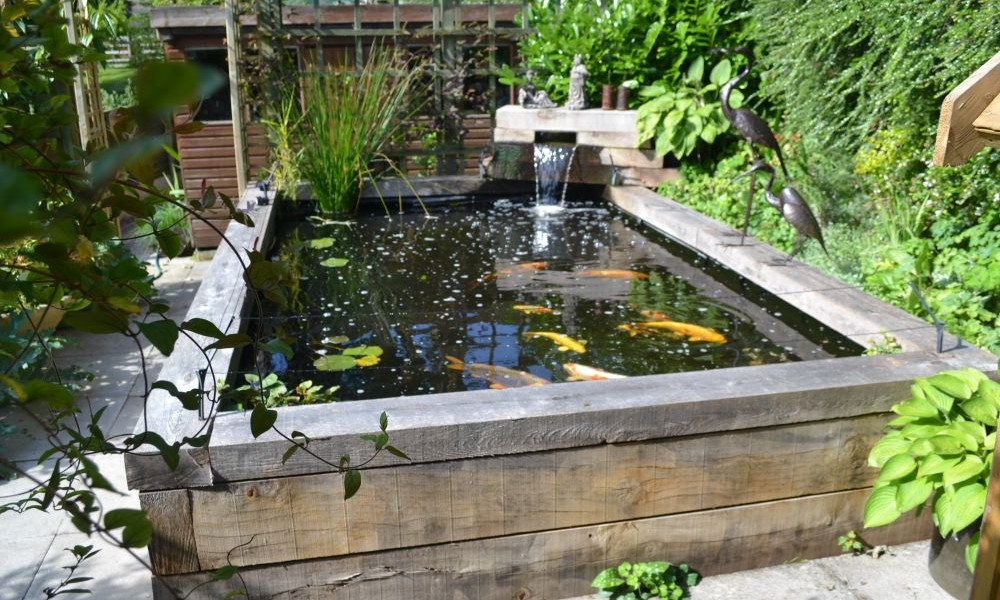 Koi Pond Design